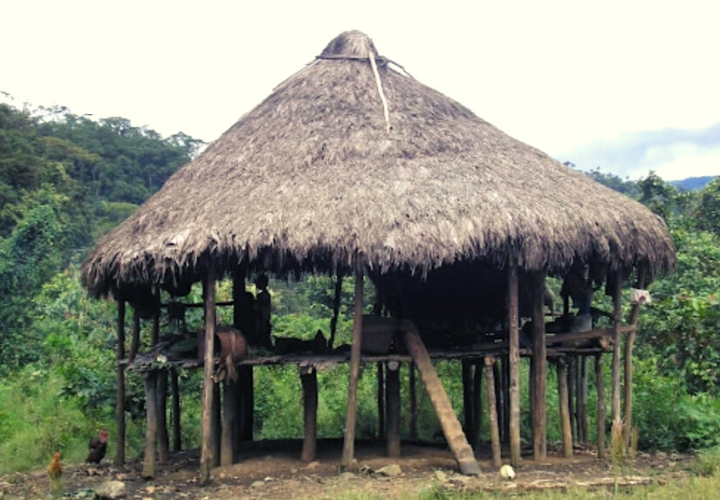 Casas de tambo: las viviendas ancestrales que han cambiado su estilo tradicional